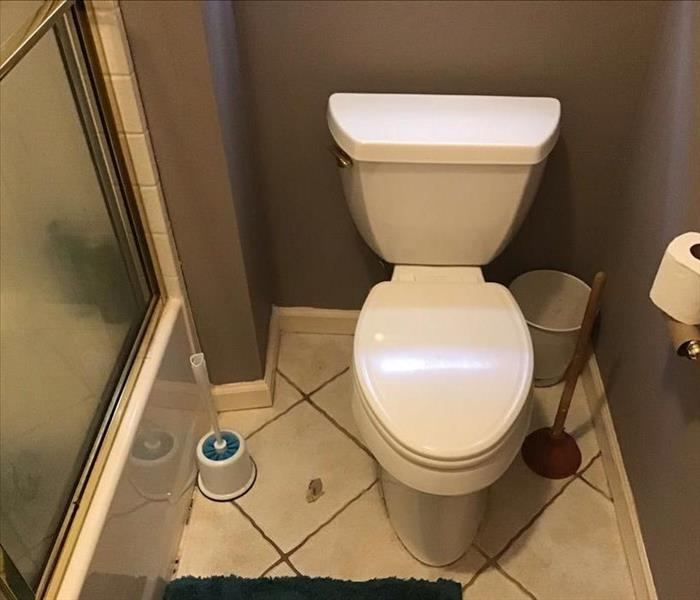 Toilet, bathroom, shower, drywall