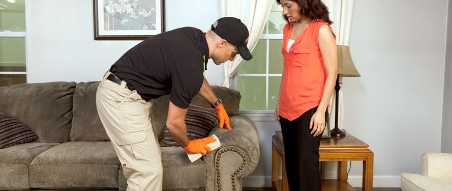 Gainesville, GA carpet upholstery cleaning